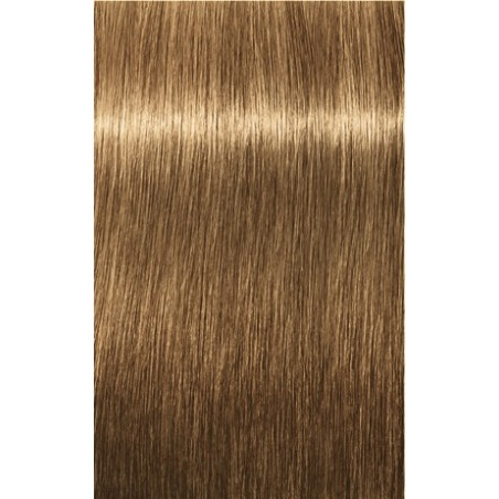 Igora Royal 6-1 Blond Foncé Cendré 3x60ml