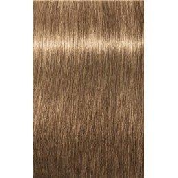 Igora Royal 6-65 Blond foncé marron doré 3x60ml