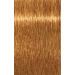 Igora Royal 9-1 Blond très clair cendré - 3x60ml