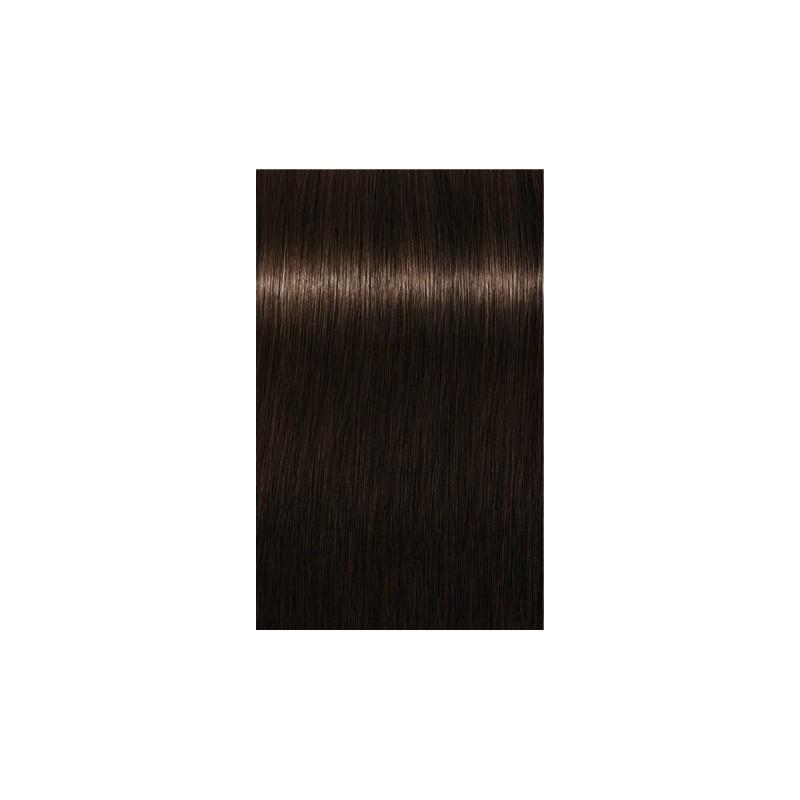 Igora Royal Absolutes 4-60 Châtain moyen marron naturel - 3x60ml