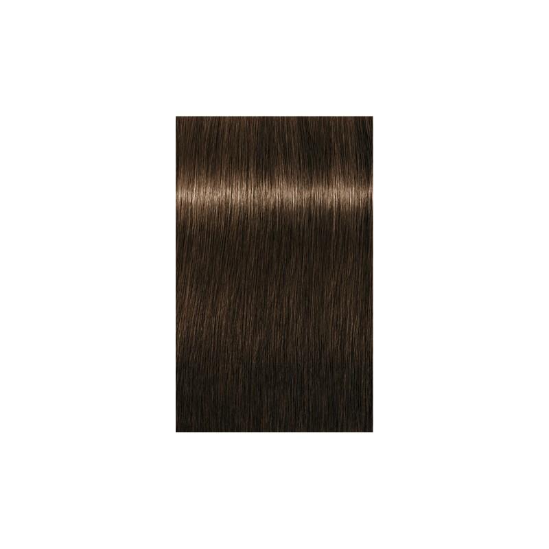 Igora Royal Absolutes 4-70 Châtain moyen cuivré naturel - 3x60ml