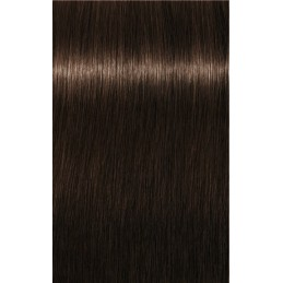 Igora Royal Absolutes 6-70 Blond foncé cuivré naturel - 3x60ml