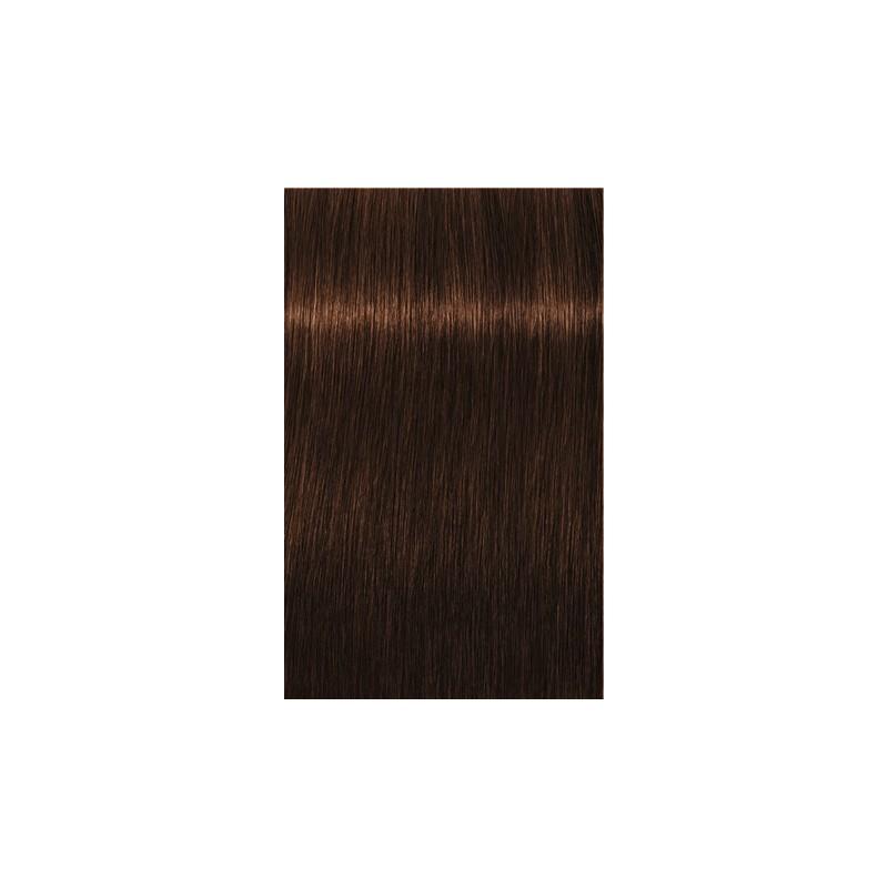 Igora Royal Absolutes 4-80 Châtain moyen rouge naturel - 3x60ml