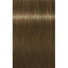 Essensity 8-14 Blond clair cendré beige - 3x60ml